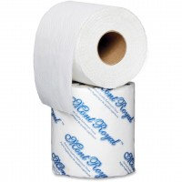 "Bath Tissue 2ply 4.5x3.5"" 96 rolls / 500 sheets"